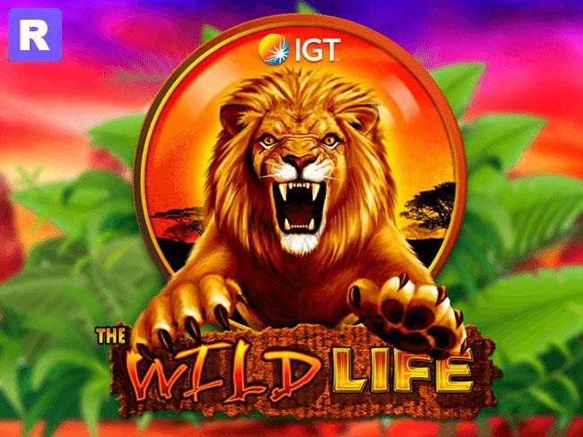 wild life free slot